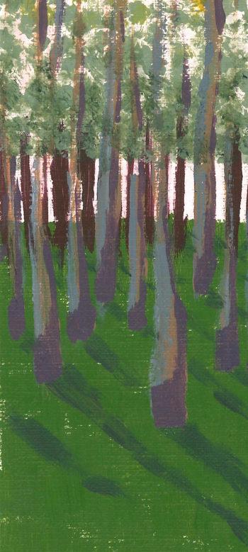Birch Grove crop 1 (c) Jennifer Mosher