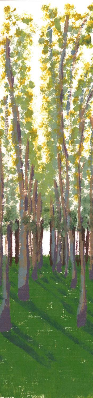 Birch Grove crop 2 (c) Jennifer Mosher