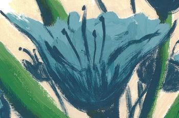 Blue Lily Day - crop 2 (c) Jennifer Mosher
