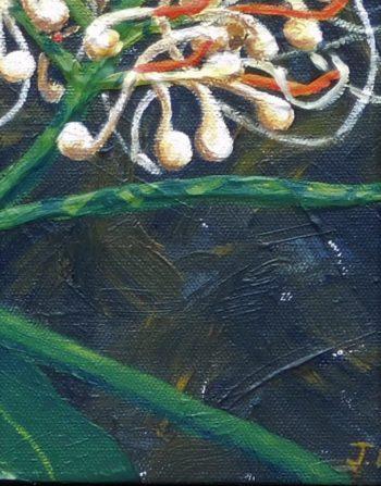 Ginger Lilies crop 1 (c) Jennifer Mosher
