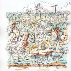Bents Basin, NSW - watercolour and ink (c) Jennifer Mosher