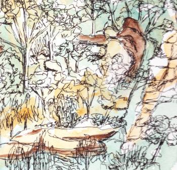 Bents Basin, NSW crop 3 (c) Jennifer Mosher