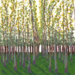 Birch Grove - acrylic on paper (c) Jennifer Mosher
