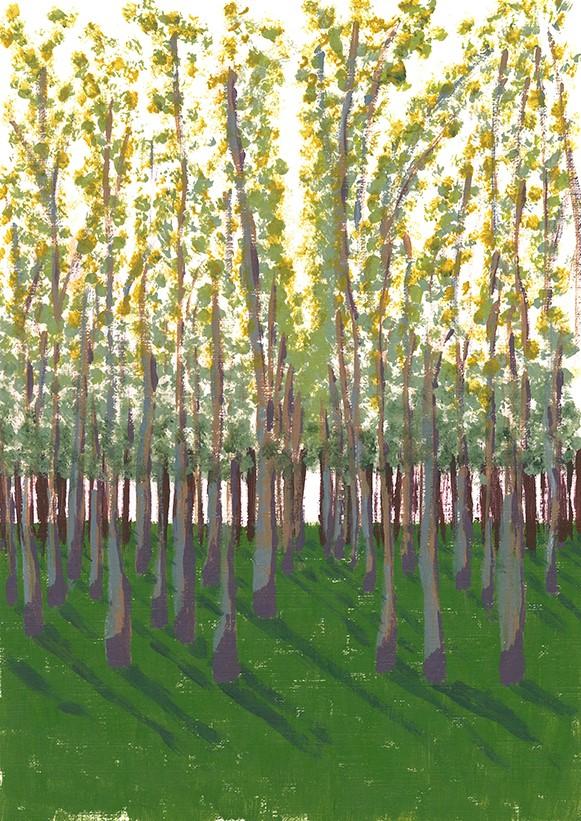 Birch Grove - acrylic on paper (c) Jennifer Mosher