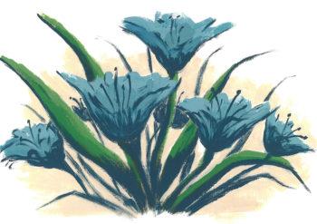 Blue Lily Day - acrylic on paper (c) Jennifer Mosher