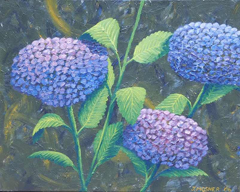 Hydrangeas - acrylic on stretched canvas (c) Jennifer Mosher