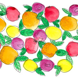 Oranges and Lemons - watercolour and ink (c) Jennifer Mosher