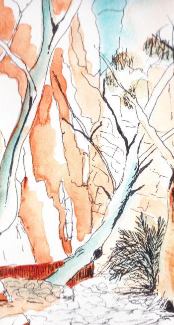 Central Australia III - crop 3 (c) Jennifer Mosher