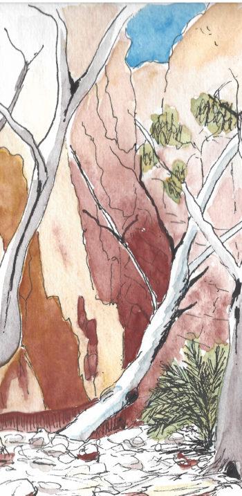 Central Australia IV - crop 3 (c) Jennifer Mosher