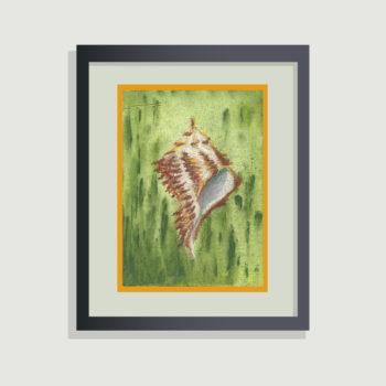 Sea Shell - framing suggestion