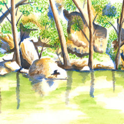 Turon River Sofala - watercolour (c) Jennifer Mosher