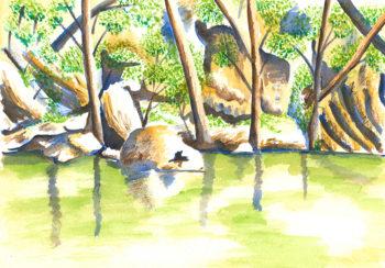 Turon River Sofala - watercolour (c) Jennifer Mosher