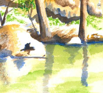 Turon River Sofala - crop 1 (c) Jennifer Mosher