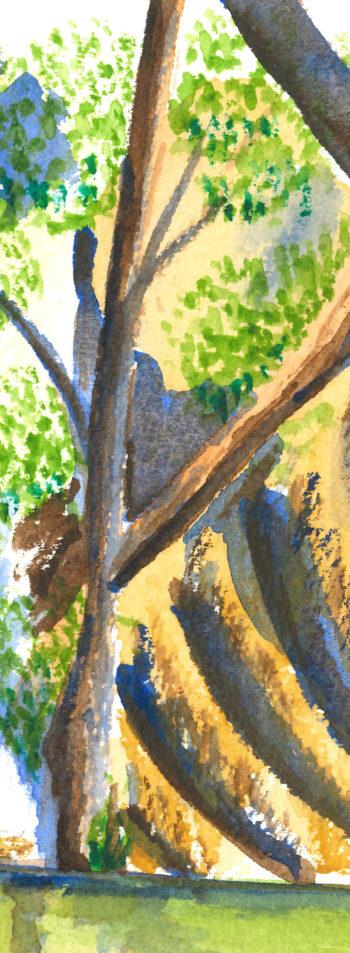 Turon River Sofala - crop 3 (c) Jennifer Mosher