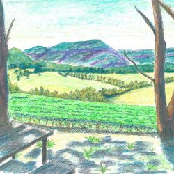 Dry Ridge Estate and Megalong Valley - watercolour (c) Jennifer Mosher