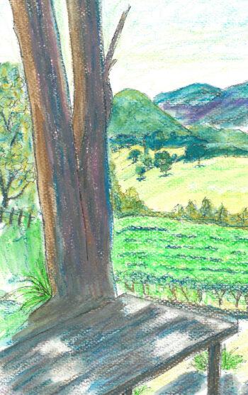 Megalong Valley from Dry Ridge Estate - crop 1 (c) Jennifer Mosher
